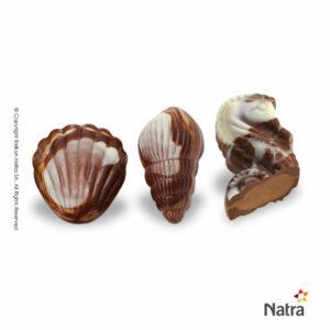 Πραλίνες σοκολάτας γάλακτος με γέμιση πραλίνας φουντουκιού σε σχήματα κοχυλιών